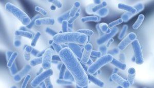 Цитомегаловирус у женщин и мужчин: симптоми, лечение