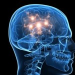 герпес мозга